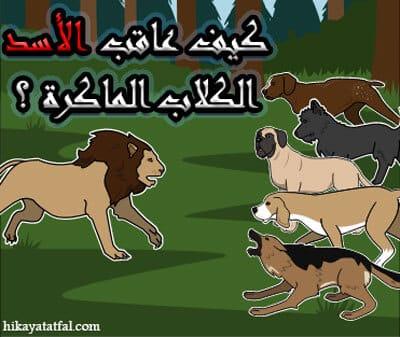 ماذا حدث مع أسد وخمس كلاب قصة من قصص الحيوانات للاطفال